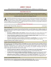 healthcare executive resume writer executive resume writer ariananovin co healthcare coo resume examples goresumepro com healthcare resume
