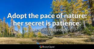 ralph waldo emerson quotes brainyquote adopt the pace of nature her secret is patience ralph waldo emerson