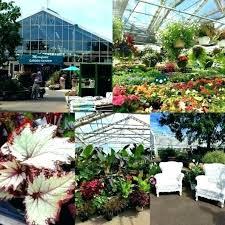 merrifield garden center hours garden center garden center photo of garden center united states perennials greenhouse
