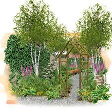 Wooland garden2 birches 50 percent.jpg
