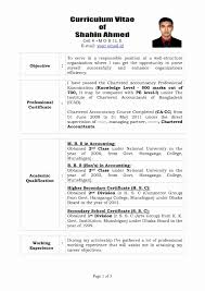Sample Resume For Experienced Accountant In India New Styles Beste