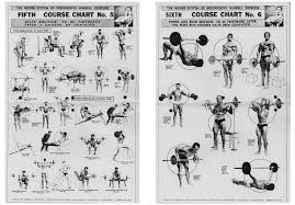Joe Weider New And Org Charts