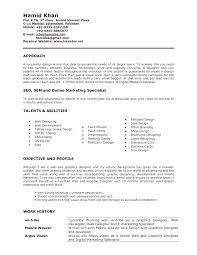 graphic designer resume example graphic design resume examples designer  free samples blue sky resumes old version