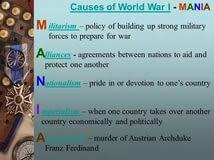 causes of world war i essay genetic disorder research paper causes of world war i essay