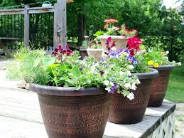 big flower pots big flower pot ideas awesome indoor flower pots ideas garages big flower pots