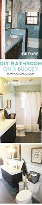 Diy Bathroom Reno 17 Best Ideas About Diy Bathroom Reno On Pinterest Rustic