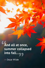 Fall Quotes Impressive 48 Beautiful Fall Quotes Best Sayings About Autumn