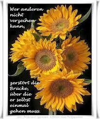 Pin Von Hase Quietsch Auf Wahre Sprüche Sonnenblumen Blumen Und