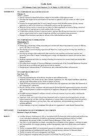 Vp Corporate Resume Samples Velvet Jobs