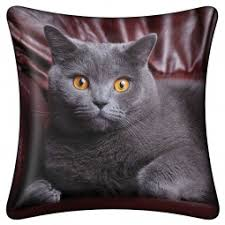 <b>Подушка</b> декоративная Magic <b>lady Cat</b> 1 - отзывы покупателей в ...