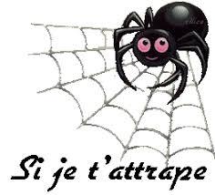 """Résultat de recherche d'images pour """"gifs d'araignées"""""""
