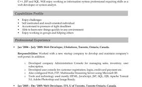 Ultimate Online Resume Graphic Design About Sample For Web