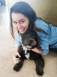 shraddha kapoor with her lhasa apso breed pet dog shyloh