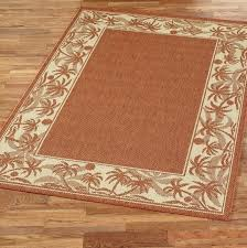 large outdoor rugs outdoor rugs for patios clearance outdoor area rugs clearance rugs ideas large outdoor