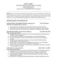 job resume what does a data analyst do underwriting amp credit analyst resume chronological resume entry level business analyst resume