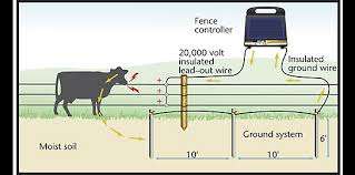 ground rod installation grounding electric fence zareba� electric fence diagram circuit at Electric Fence Wiring Diagram