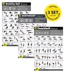 Home Gym Exercise Poster 3 Pack Laminated Build Strength