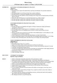 Manager Experience Strategy Resume Samples Velvet Jobs