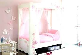 Princess Canopy Beds Bed For Girls Affordable Little Girl Iron King ...