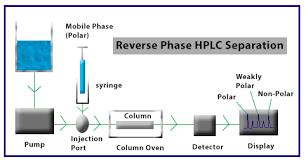 Hplc Principle Reverse Phase Hplc Chemistry Tutorvista Com