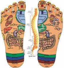 31 Printable Foot Reflexology Charts Maps Template Lab