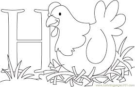Small Picture H For hen Coloring Page Free Chicks Hens and Roosters Coloring