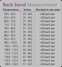 measure your bra size bra measuring guide bra size chart fitting guide