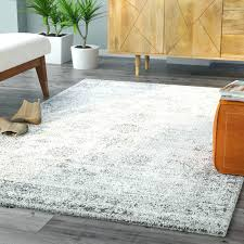 wayfair area rugs 5x7 home and furniture eye catching gray area rug at wrought studio hand