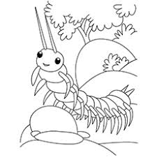 Small Picture Top 17 Free Printable Bug Coloring Pages Online