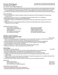 Example Director of Financial Systems Resume   Free Sample