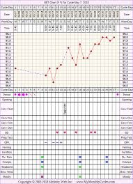 24 Day Menstrual Cycle Chart Bbt Chart For May 7 2018