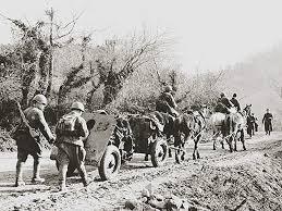 Роль лошади в Великой Отечественной войне О лошадях КОНОВОД vetkovski raion den pobedi bujnevich 20