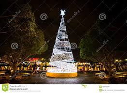 Christmas Bright White Lights Night Photography Of Bright White Christmas Tree Lights At