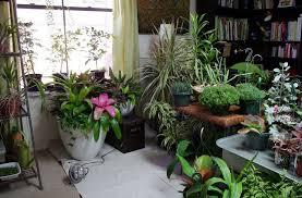 indoor garden ideas container