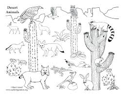 desert animal coloring pages large desert scenery coloring pages coloring pages free printable desert animal coloring
