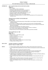 Sample Resume For Erp Support ERP Developer Resume Samples Velvet Jobs 2