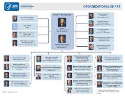 Cdc Organizational Chart Graphic Cdc Organizational Chart Career Organizational