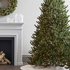 Brilliant Interesting Lighted Tree Home Decor Lit Birch Tree Best Home Decor Trees