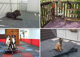rubber mats by warco make the best pet friendly flooring they not only durable