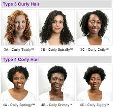 Curl Pattern Types