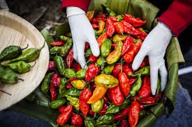 Can Ghost Peppers Kill You Howstuffworks