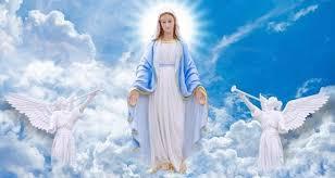 Biskup: odrzucamy dogmaty o niepokalanym poczęciu i wniebowzięciu ...