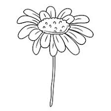 Small Picture Daisy Flower Garden Coloring Sheets Printable Coloring Pages