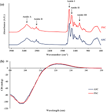 Extraction and Characterisation of Collagen from the Skin of <b>Golden</b> ...