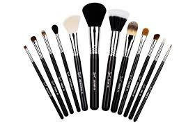 best professional makeup brushes 3 sigma