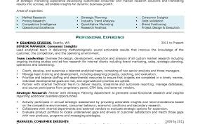 Top Professional Resume Writing Services Resume Job