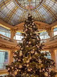 Christmas In San Francisco  Iu0027m Not Yet DeadChristmas Tree In San Francisco