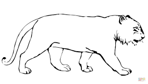 Small Picture Tiger Without Stripes coloring page Free Printable Coloring Pages