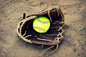 Image result for yellow jacket softball