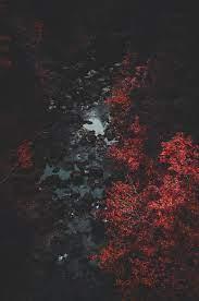 Nature, Photography, Dark wallpaper